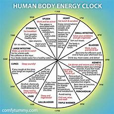 Chinese Body Chart Chinese Body Clock Shows When Each Organ Is At Its Peak Energy