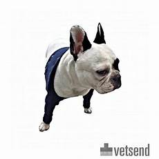 sleeve front leg mps taz2 front leg sleeves dogs shop now