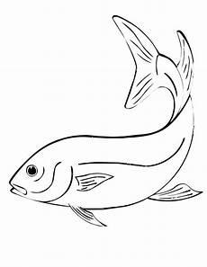 Fische Zeichnen Malvorlagen 39 Fish Templates Free Premium Templates
