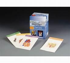 Clinical Oriented Anatomy Flash Cards Anatomy Study