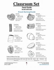 Fossil Record Chart Fossil Guide 2018