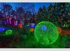 Blossoms of Light   Denver Botanic Gardens