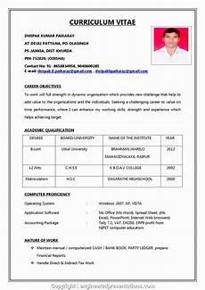 Formet Resume Professional Resume Format For Job Simple Resume Format