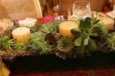 composizioni candele diy composizioni originali di piante grasse bigodino