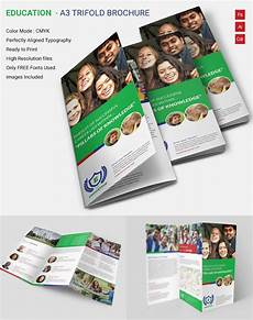 3 Fold Brochure Templates 19 School Brochure Psd Templates Amp Designs Free