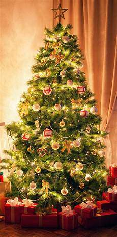 Free Images Of Christmas Trees Christmas Tree Tradition History Amp Facts Britannica