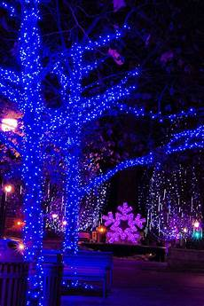 Christmas Light Show Asheville Nc 83 Best Christmas Amp Holidays In Asheville Images On