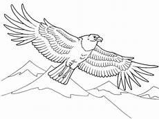 Malvorlagen Kinder Adler Ausmalbilder Malvorlage Adler Kostenlos 3 Ausmalbilder