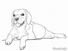 Ausmalbilder Hunde Beagle Ausmalbilder Mit Hunden Hunde