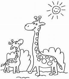 Ausmalbilder Drucken Giraffe Ausmalbilder Giraffe Baby 1044 Malvorlage Giraffe