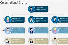Sample Of Organisation Chart Hierarchical Organizational Chart Template