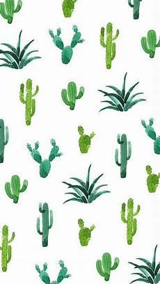 cactus iphone wallpaper pin by ria gardiner on wallpapers screensaver iphone