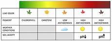 Plant Color Chart Mrspodlipski Sbi4u 2013 Resource Guide
