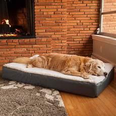 orthopedic lounge bed w sherpa snoozer