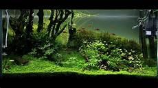 ada aquascape ada 90p aquascape quot running up that hill quot maintenance day