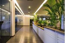 Chumbak Design Pvt Ltd Head Office Pfizer Corporate Head Office Najmi Bilgrami