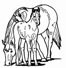 and pony coloring page coloring book