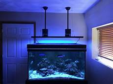 T5 Hybrid Reef Light My Review Of The Aquatic Life T5 Hybrid Reef2reef