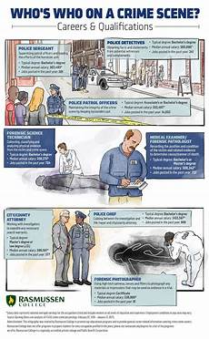 Investigation Jobs Csi Simplified Your Visual Guide To Crime Scene Jobs