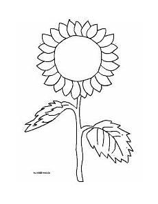 sonnenblume einfach malvorlage herbstdeko malvorlagen