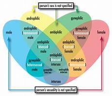 Sexual Orientation Chart Androphilia And Gynephilia Wikipedia