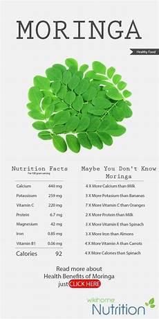 Moringa Chart What Are Moringa Plant Benefits Quora