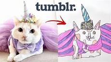 imitando fotos desenhos gato fofo