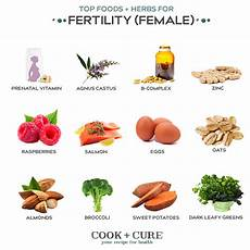 fertility diet best foods herbs cook cure