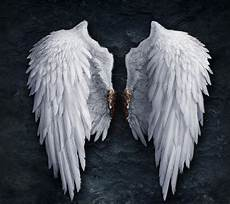 Drawing Of Angel Wings Assignment 1 Story Research Des250 Digital Media