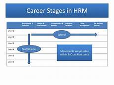 Stages Of Career Development Career Stages In Hrm
