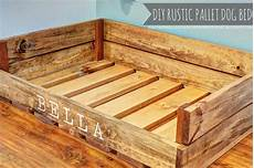 pet ideas on diy bed beds and