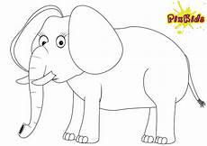 ausmalbild elefant kostenlose malvorlagen