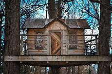 20 simple tree house plans and design to take up this