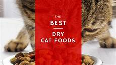 Cat Food Reviews 5 Best Dry Cat Food Reviews 2019 Only The Best Brands