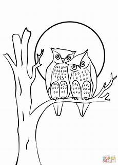 owls in coloring page free printable