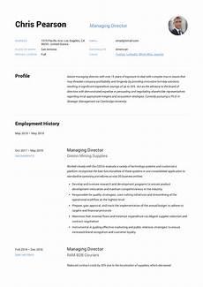 Resume Managing Director Managing Director Resume Amp Writing Guide 12 Examples