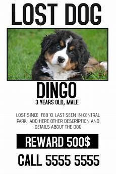 Lost Dog Poster Maker Lost Dog Lost Pet Color Poster Template Postermywall