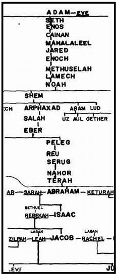Adam And Family Chart Bible Project From Adam To Noahs Sons 1 Chronicles 1 1 27