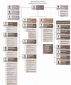 Best Buy Org Chart 25 Typical Orgcharts Solution Conceptdraw Com