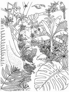 Malvorlagen Tiger Woods Rainforest Animals And Plants Coloring Page Animal