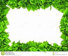 Green Border Design Leafy Green Border Stock Illustration Illustration Of