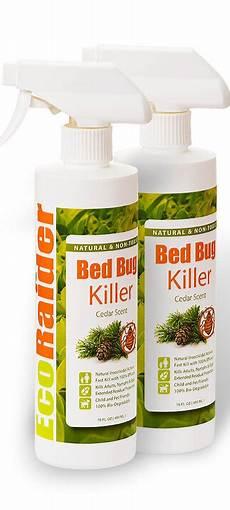 bed bug killer spray 16oz pack ecoraider