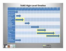 Project Management Timeline Example Project Management High Level Timeline Templates At