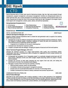 It Professional Resume Examples It Resume Samples 2016 Cto