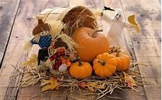 pumpkin iphone wallpaper pumpkin background 183 free hd backgrounds
