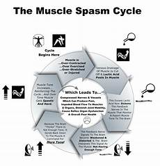 Muscle Spasm Cycle Neurosoma Therapy Of Fresno
