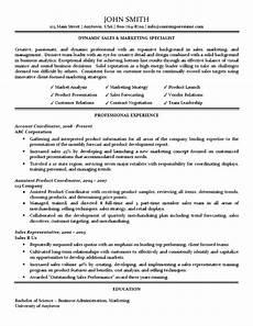 Marketing Specialist Resume Sample Sales Amp Marketing Specialist Resume Traditional Standard