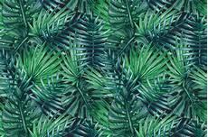Tree Designs Tumblr 10 Lush Palm Tree Leaves Patterns Psdblast