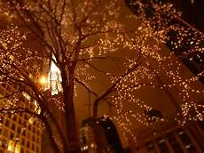 Twinklers Lights Coffee And Stilettos Snow Brunch Twinkle Lights