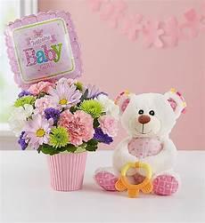 Welcome Baby Girl Lotsa Love 174 Welcome Baby Girl 1800flowers Com 166363
